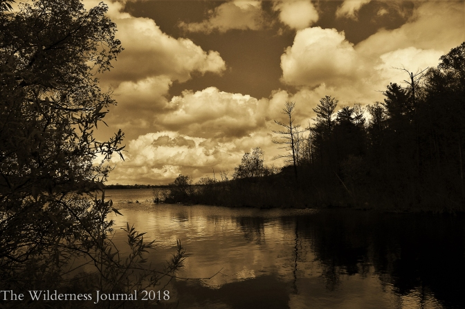 Kodak P880 Boardman River 5 21 17b