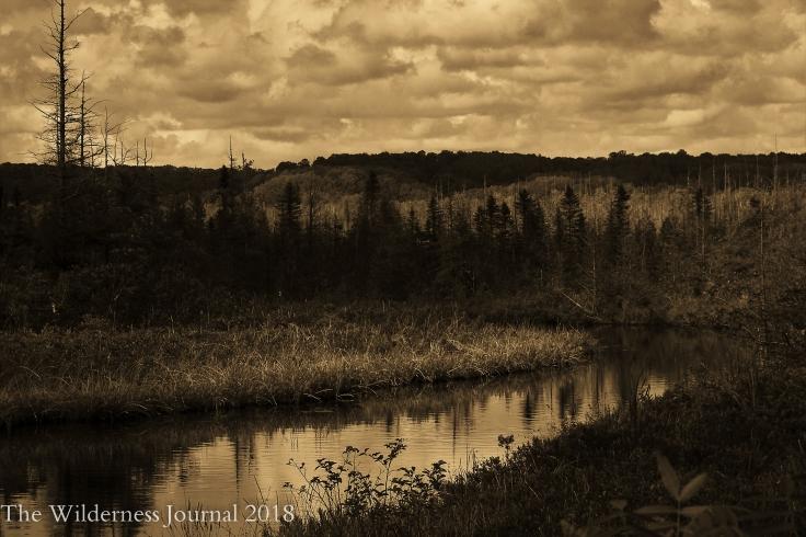 Kodak P880 Deadstream Road 6 25 17 b