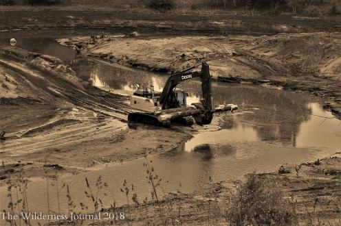 Kodak P880 Boardman River Restoration 6 12 17 a